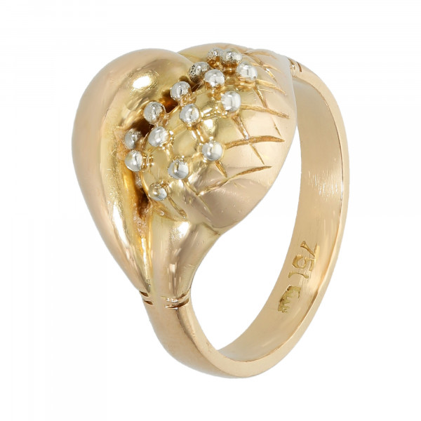 Ring 750 bicolor