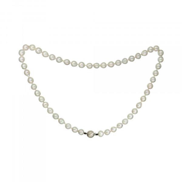 Perlenkette hellgrau 51 Choker – Perlen mit Kugelschloss Silber matt 925